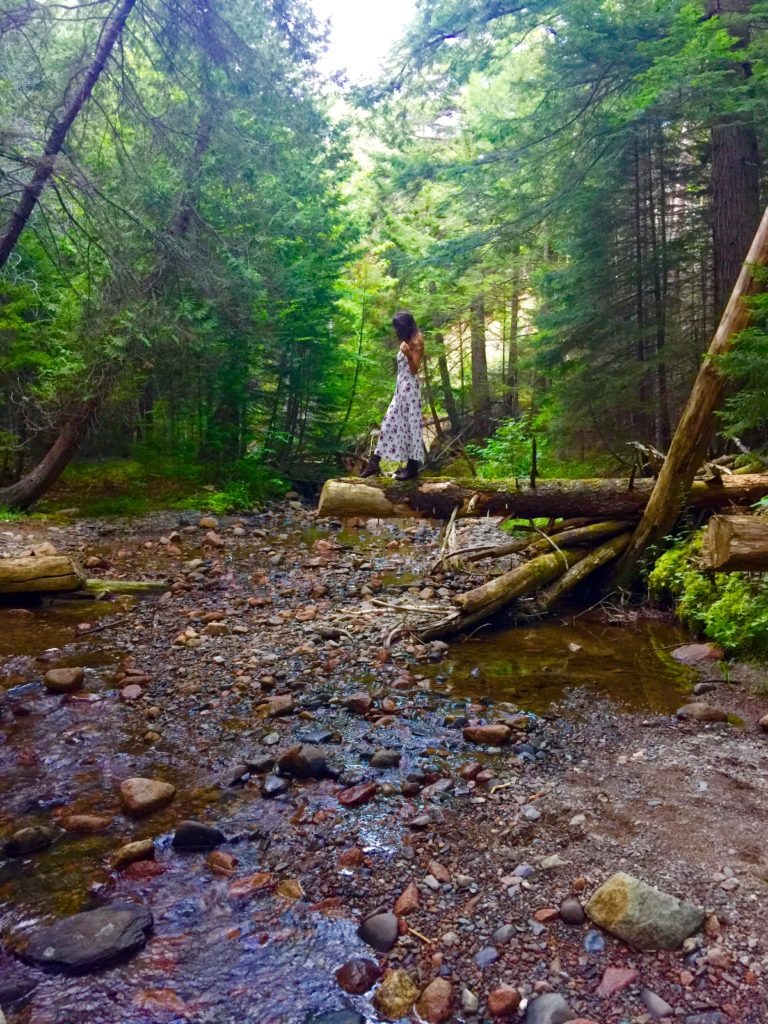 girl on the creek Acadia forever21 dress