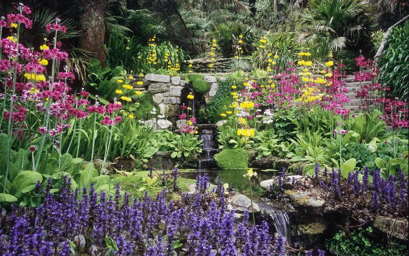 10 Ways To Create A Beautiful Garden With Minimal Effort