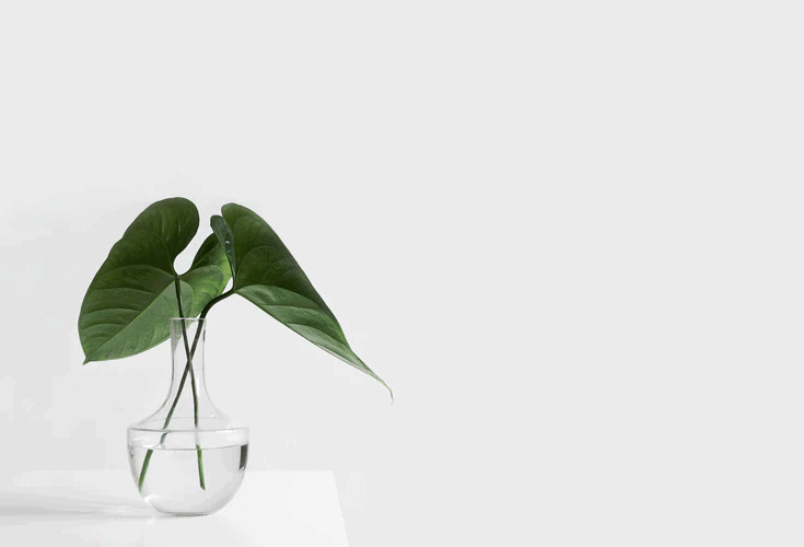 7 Easy Ways To Become A Minimalist And Save More Money